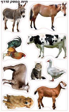 חיות המשק מצולם