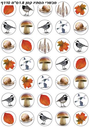 סמלי הסתיו קטן