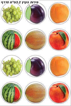 פירות הקיץ