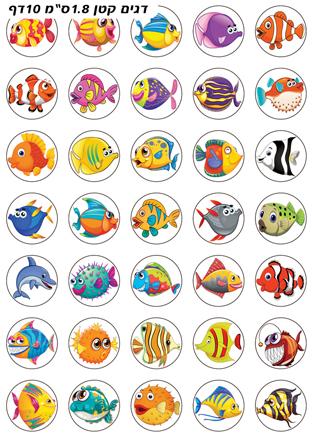 דגים קטן