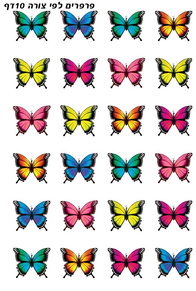 פרפרים לפי צורה