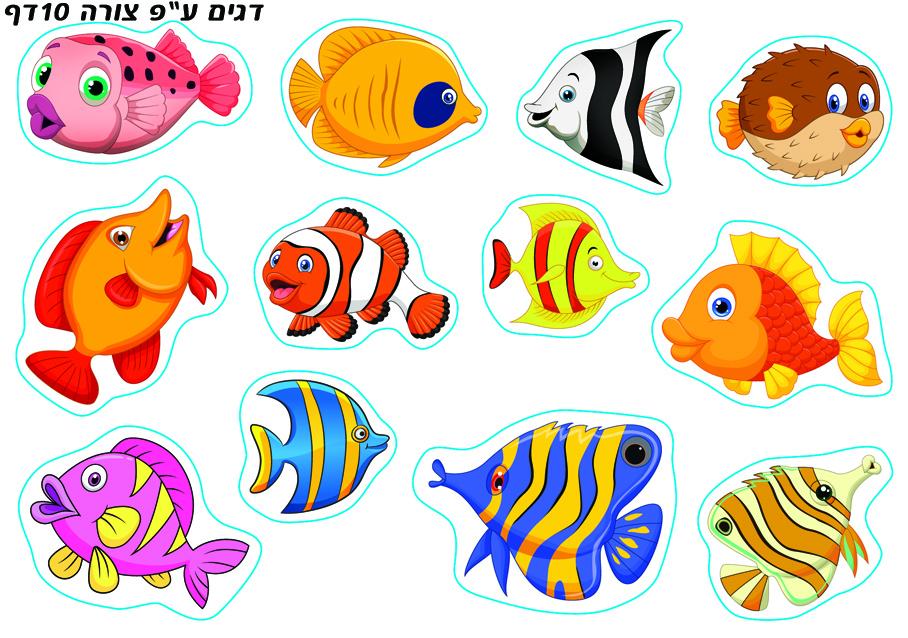 דגים לפי צורה